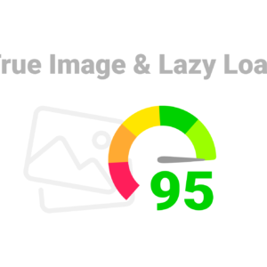 true image lazy load cover